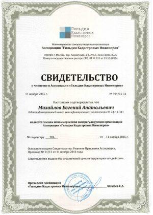 984 Михайлов Е.А.